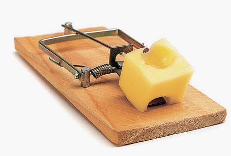 trampa queso